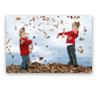 Decoraciones Murales - Forex®